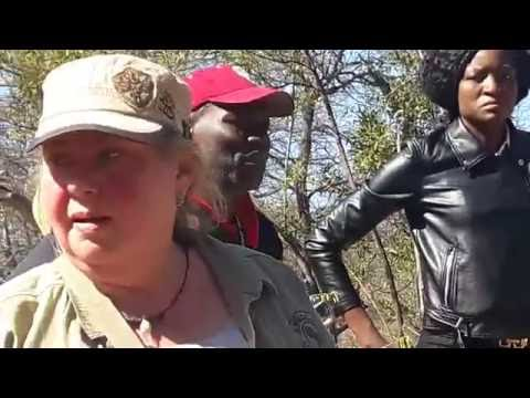 Rhinos square up against each other at Matobo Hills