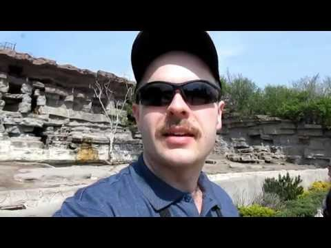 Let's Visit the Detroit Zoo