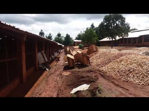 Commercial Poultry Farming in Uganda and Farm Setting