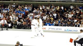Tokio2017_world_of_kyokushin.