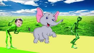 учить животных для малышей - животные для детей - видео развивающее #26
