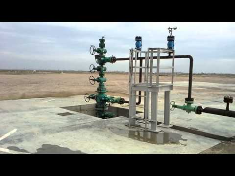 Wellhead a short view