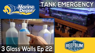 TANK EMERGENCY!: 3 Glass Walls with Reefbum Part 22