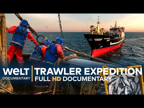 On A FISHING EXPEDITION - Germany's Biggest Deep-Sea Trawler | Full Documentary