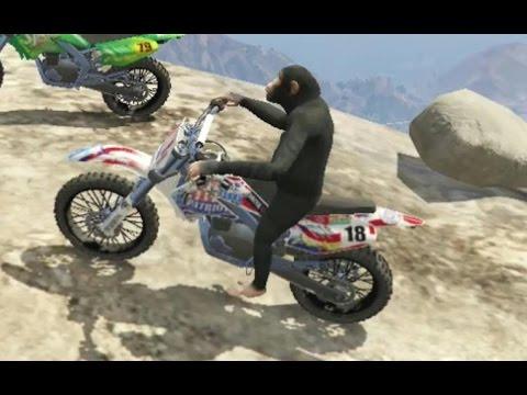 GTA 5 - Loucuras que só um macaco doido poderia fazer ( vídeo zoeira total )