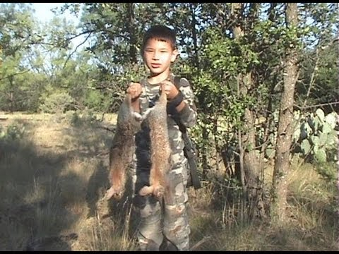 impacts of hunting Economic impact & hunting/fishing 3 household whom provided information on other family members whom participated in the activities a total of 21,938 hunters and fisherman and 11,279 wildlife watchers completed the.