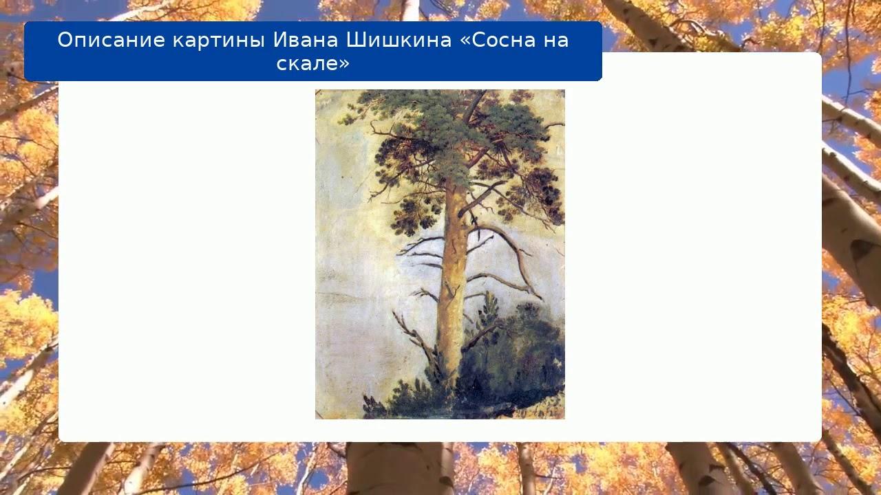Описание картины Ивана Шишкина «Сосна на скале» - YouTube