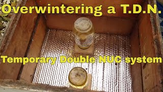 🔵Overwintering mating NUCs - Going thru a temporary double nuc (TDN) before a cold snap!