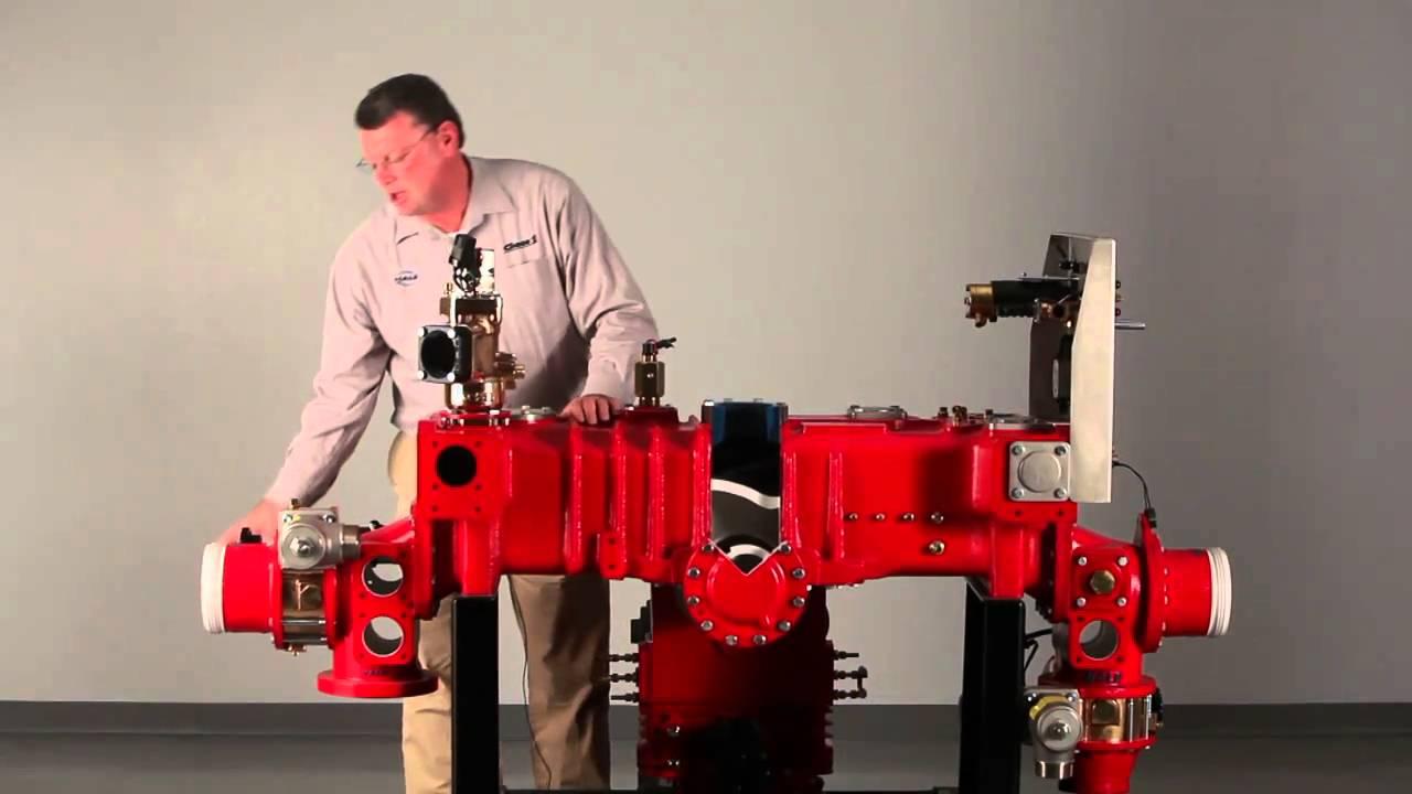The Hale Qmax Pump
