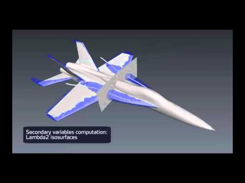The Cobra Aircraft CFD Simulations
