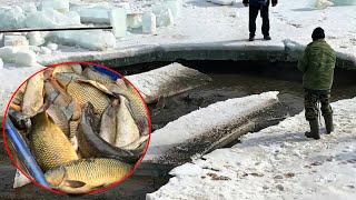 БУДНИ РЫБХОЗА Спуск пруда и отлов крупной рыбы Тут много КАРПА ЩУКИ РЫБОРАЗВЕДЕНИЕ в Спасске