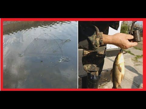 Удачная рыбалка на удочку и паук (подъемник) в Рубцовске.