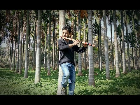 Mile ho tum hum ko flute instrumental cover song