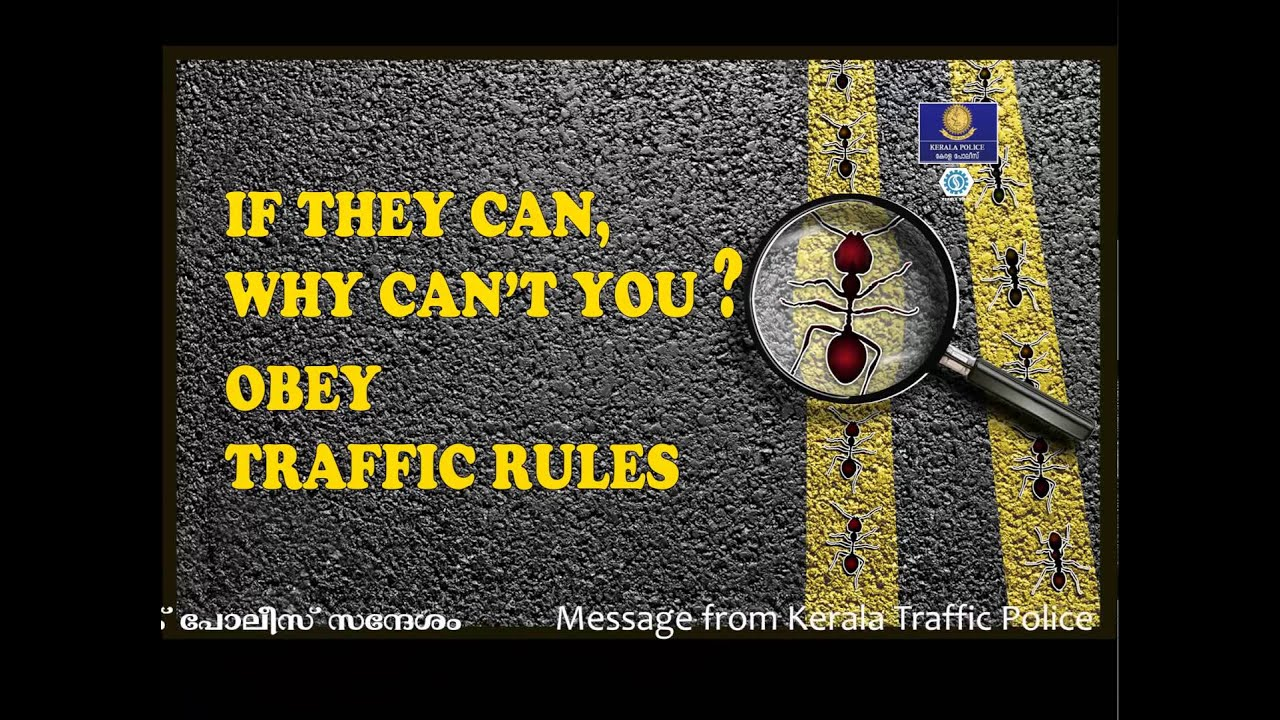 obeying traffic rules essay Analytical writing sample essays and commentaries  such as where to skate and obeying laws of traffic any violations to these skating rules could have been the.