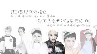 【中字】EXO - Don't Go (Korean Version) 認聲版