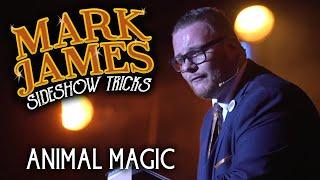 Mark James: Animal Magic
