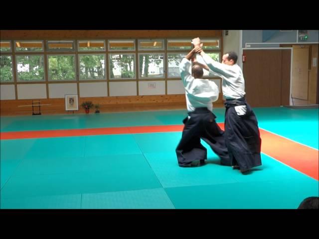 Aikido Projections -Mare Seye Stage d'été