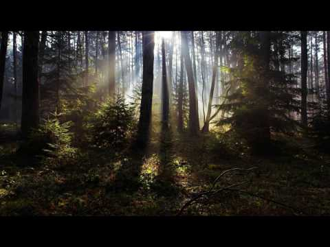 Never Fade Away (Andy Duguid Remix) - John O'Callaghan *HD*