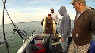 Lake Erie Walleye Fishing 2015