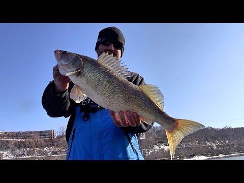FINALLY Fishing Open Water Again!!! (Pool 2 Walleyes)