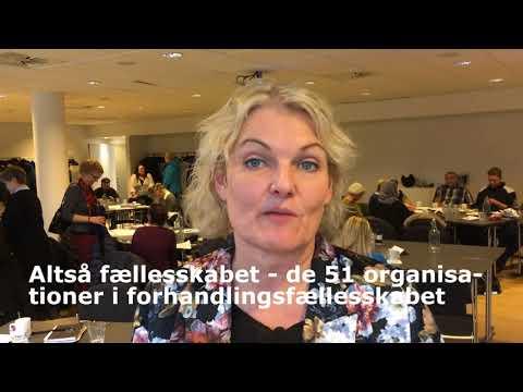 BUPL-formand Elisa Bergmann besøger tillidsrepræsentanter i BUPL Hovedstaden til OK18