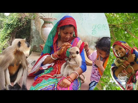 Animal mother vs Human mother, one who give birth, other one who take care when the baby was injured