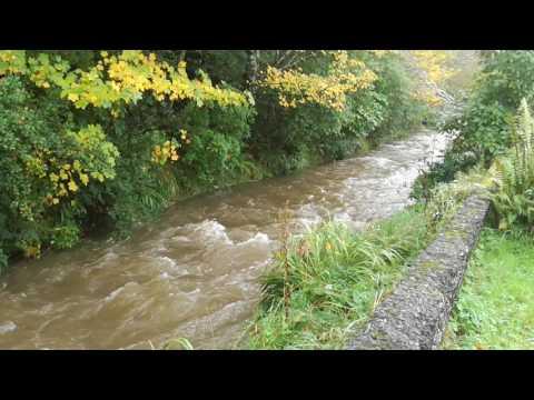 Lindsay Creek after heavy rain