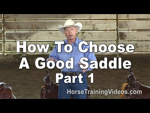 How To Choose A Good Saddle That Fits You, Your Horse & Your Style of Riding - Part 1