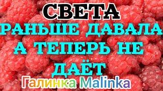 Колесниковы /Света /Раньше давала, а теперь не даёт /Обзор Влогов /