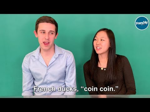 French People and Americans Compare Animal Sounds