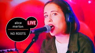 Baixar Alice Merton - No Roots akustycznie (Live at MUZO.FM) - Niesamowity występ!