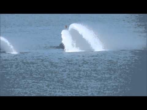 Israel Navy Ship Tannin - Super Dolphin Submarine's official reception
