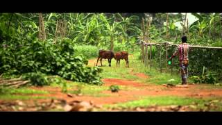 Documentary on Agriculture Statistics by FAO Bangladesh