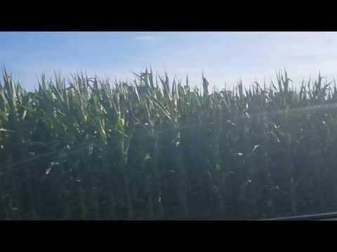 Pennsylvania Rural Corners Fields