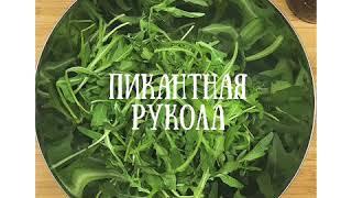 Салат с руколой и креветками - невероятно вкусно и полезно!