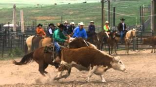 Colorado Cattle Company Cowboy School