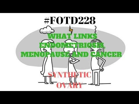#fotd228-synthetic-ovary