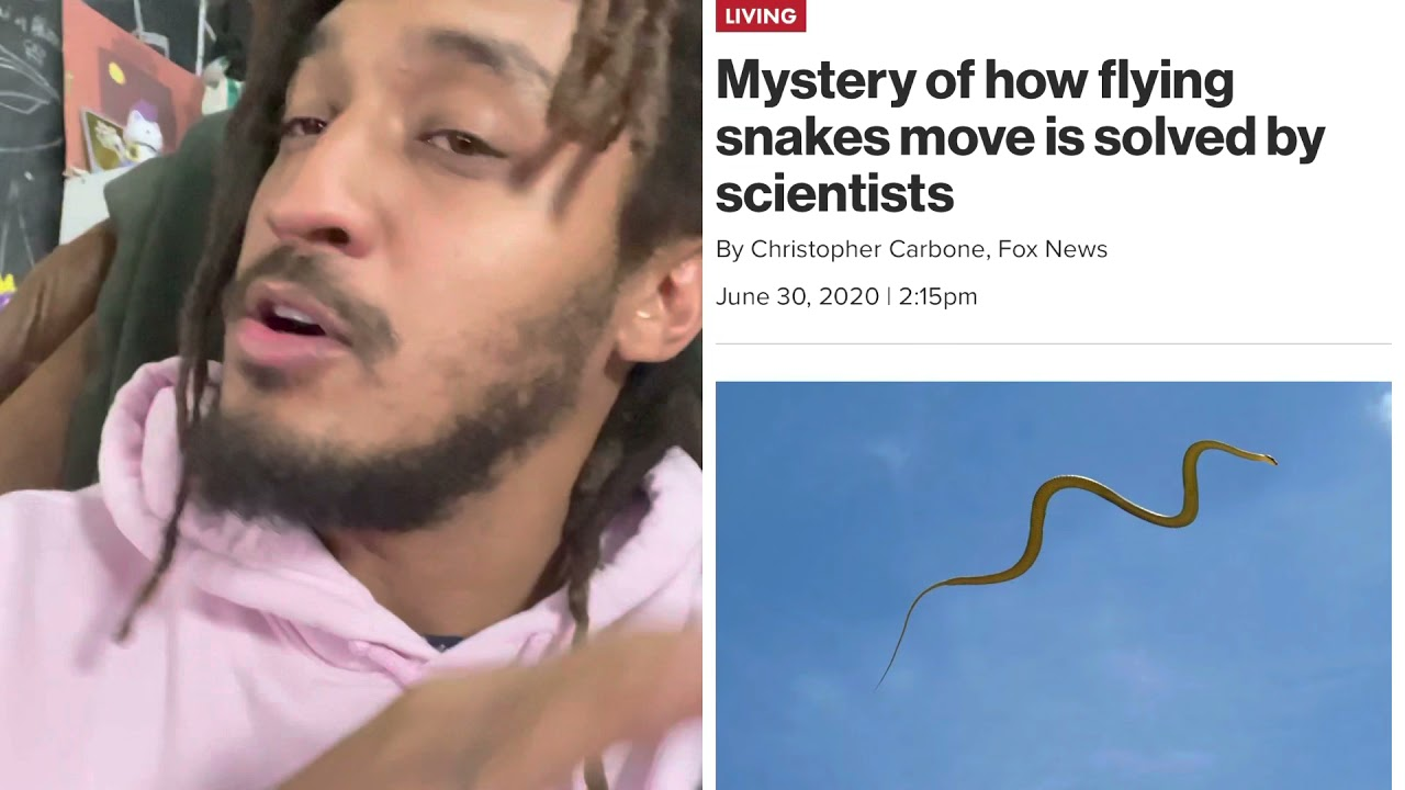 Wait...There Are FLYING SNAKES?!🤔🐍 #PatGeo
