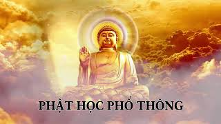 ❤22 tập Phật học phổ thông phần 15❤