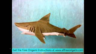 Origami Shark Instructions