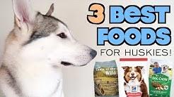 TOP 3 HEALTHIEST Foods For Siberian Huskies!