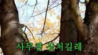 마지막 잎새-배호