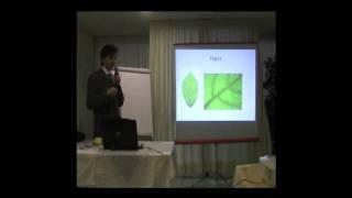 Elementi di teoria del caos e Semeiotica Biofisica Quantistica. terza parte. di Simone Caramel