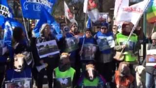 6 marzo 2015 - Flash Mob Animalisti a Villa Borghese 3