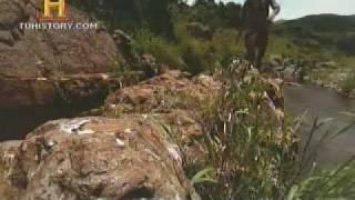 La historia de la tierra 4 Agua Colinas de Barberton Gary Stevens