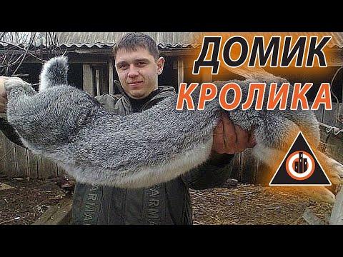 кроликов фильм-3