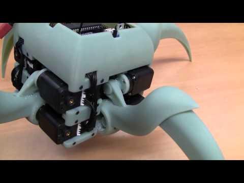 Aracna: An Open-Source Quadruped Robotic Platform