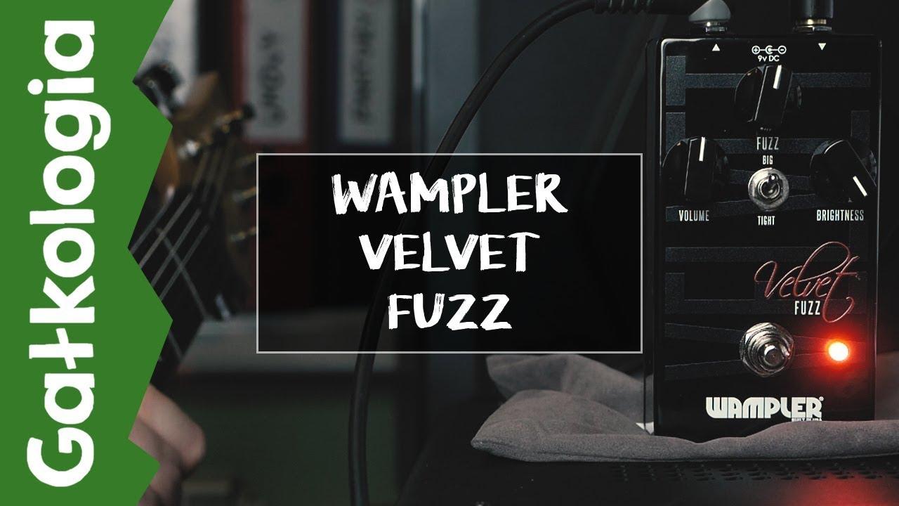 Wampler Velvet Fuzz [GAŁKOLOGIA]