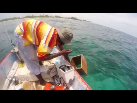 Grand Cayman Fishing - Local Caymanian Fishing Technique - no rod and reel needed!