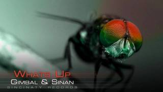Gimbal & Sinan - Whats Up (Housefly Vol. 7)